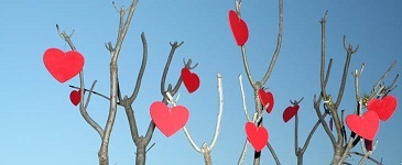 singles cafe singles events dating oost datingoost valentijnsparty singlescafe valentijn zaterdag 15 februari 2020